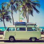 Nákladní auta na stěhování i byznys